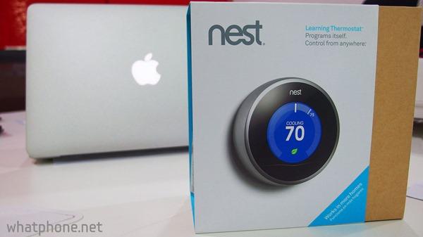 Nest-001.jpg