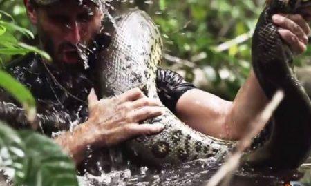 eaten alive by snake