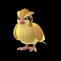 016 Pidgey