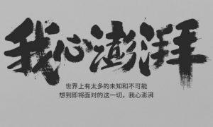 xiaomi-pinecone-header