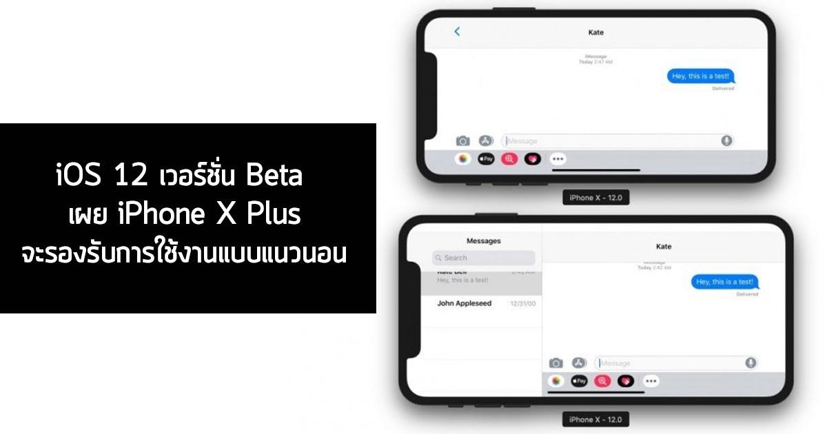 iPhone X Plus with IOS 12