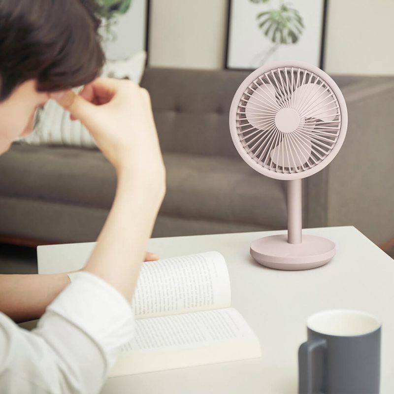 Xiaomi Desktop Fan