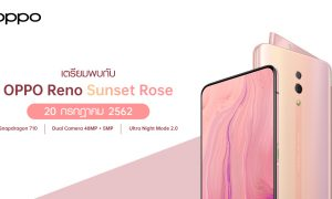 New OPP Reno Sunset Rose