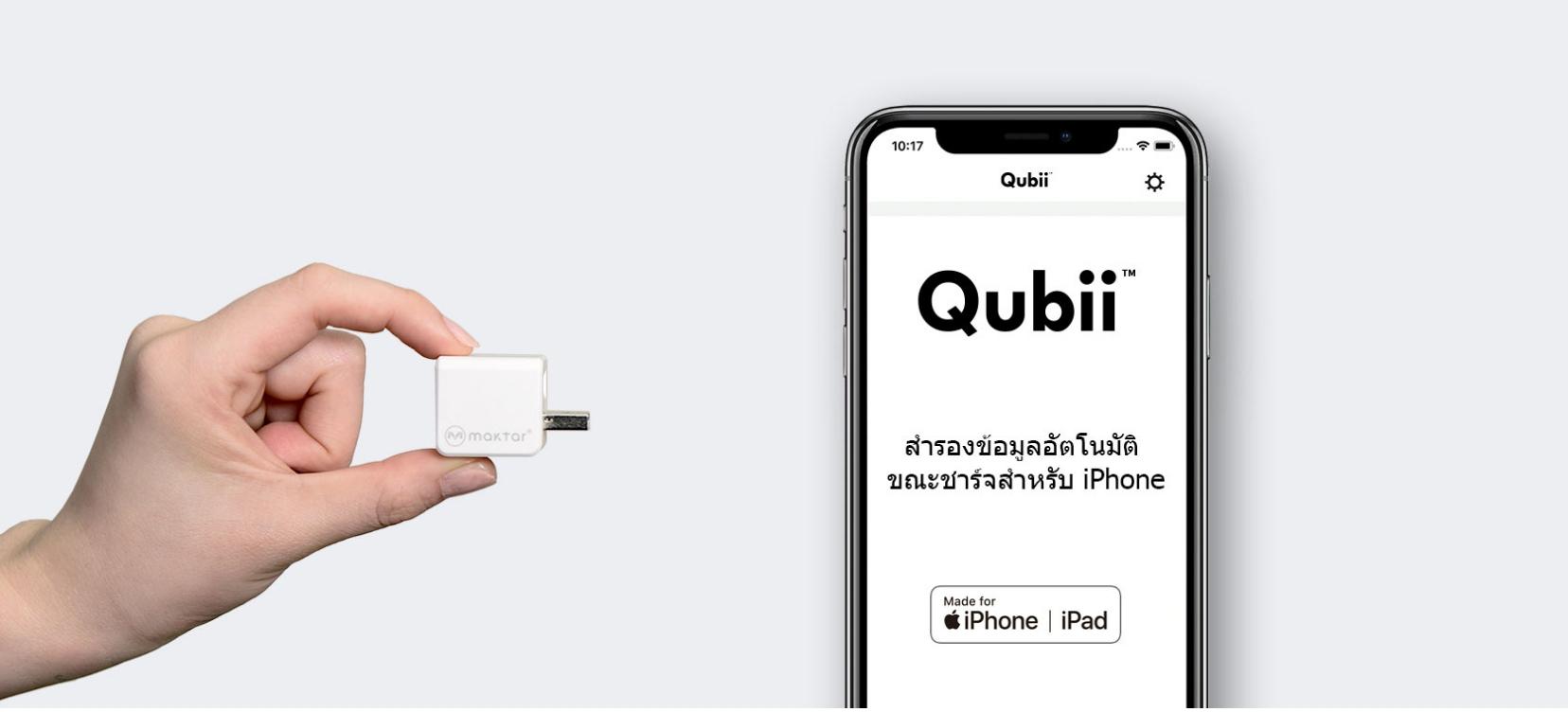 Qubii backup for iOS