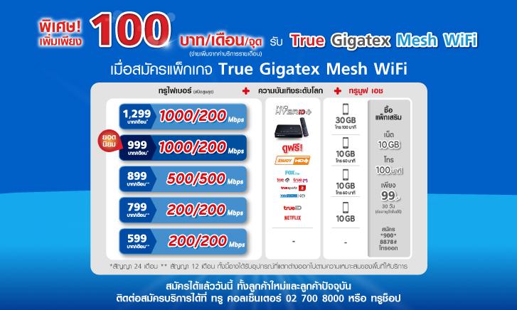 True Gigatex Mesh Wifi Work From Home (1)