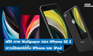 free download wallpaper iPhone se 2 for iphone and ipad